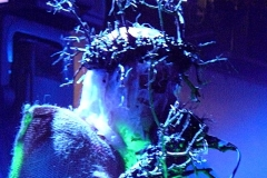 Attila_csihar_live_9_12_07_minehead